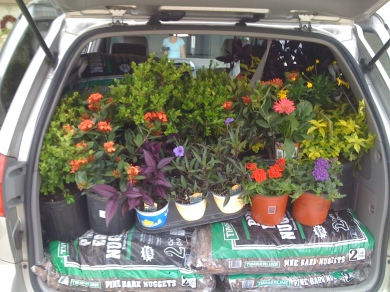 Flowering Van